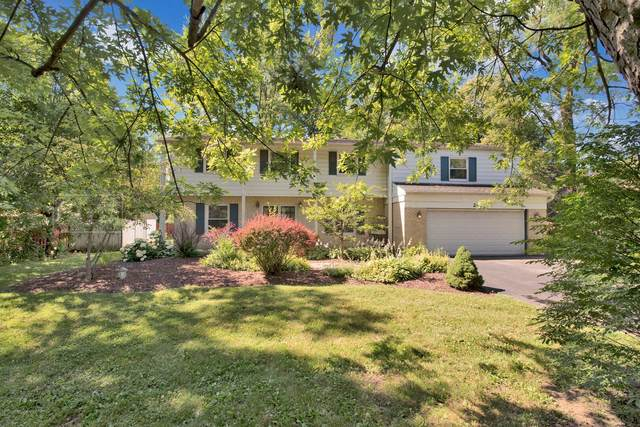 241 80th Street, Willowbrook, IL 60527 (MLS #11072999) :: BN Homes Group