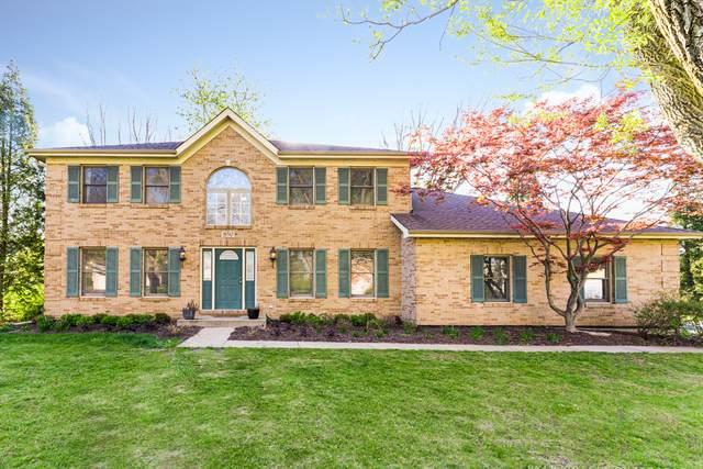 850 Honeysuckle Avenue, West Chicago, IL 60185 (MLS #11073138) :: Littlefield Group
