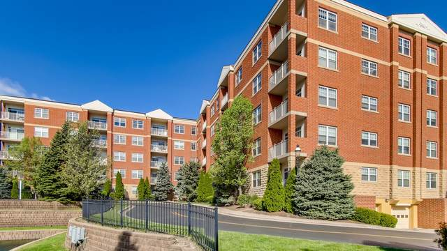 1 Itasca Place #103, Itasca, IL 60143 (MLS #11073189) :: Littlefield Group