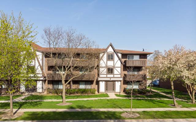1008 Centurion Lane #12, Vernon Hills, IL 60061 (MLS #11073222) :: Littlefield Group