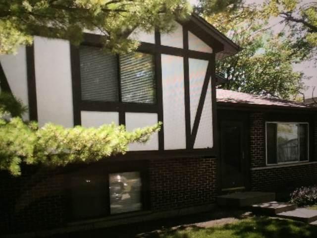 6251 Kit Carson Drive #6251, Hanover Park, IL 60133 (MLS #11073273) :: Littlefield Group