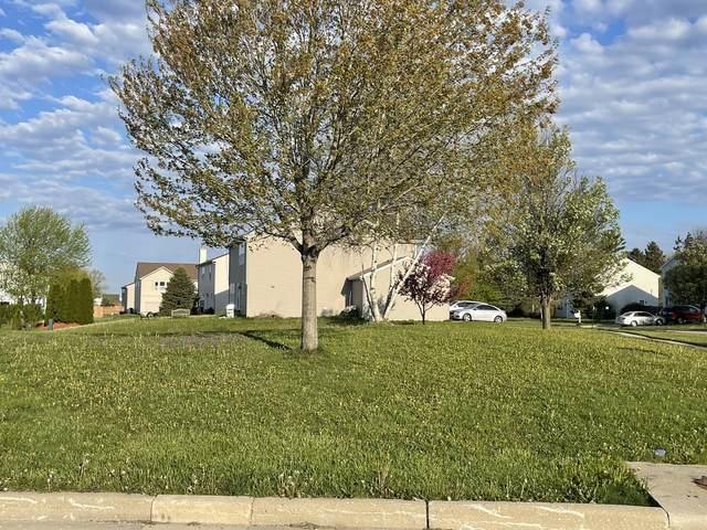 800 Willow Street, Kirkland, IL 60146 (MLS #11073318) :: Helen Oliveri Real Estate