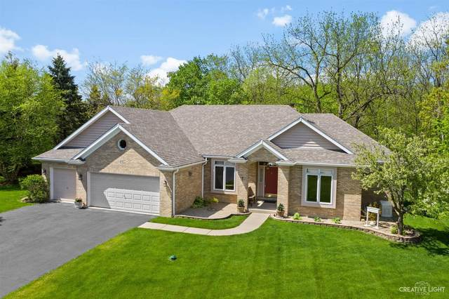 48 Maple Ridge Lane, Yorkville, IL 60560 (MLS #11073321) :: The Dena Furlow Team - Keller Williams Realty