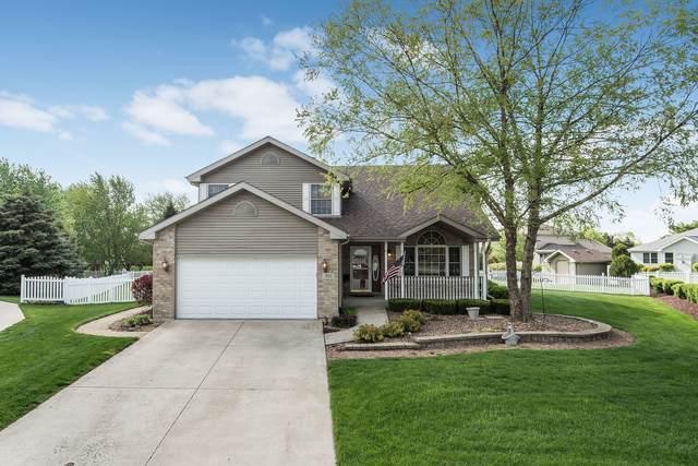 931 Lark Street, Peotone, IL 60468 (MLS #11073512) :: Carolyn and Hillary Homes
