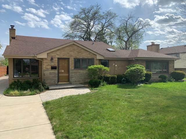 8537 W Crain Street, Niles, IL 60714 (MLS #11073609) :: Helen Oliveri Real Estate