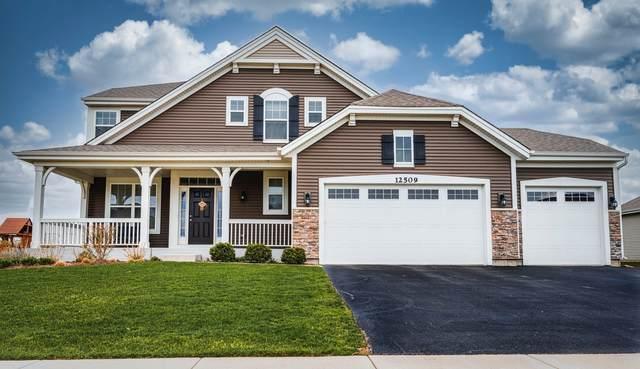 12509 Elliot Lane, Huntley, IL 60142 (MLS #11073650) :: Ani Real Estate