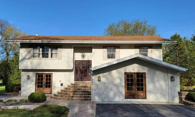 1025 Onaway Trail, Algonquin, IL 60102 (MLS #11073703) :: Helen Oliveri Real Estate