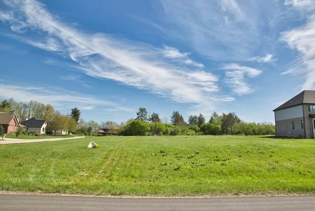 12921 W Hunt Club Court, Mokena, IL 60448 (MLS #11073995) :: Jacqui Miller Homes