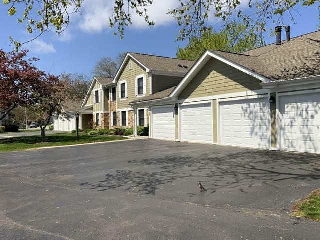 1104 Wildberry Court C1, Wheeling, IL 60090 (MLS #11074011) :: Helen Oliveri Real Estate