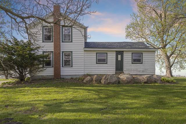 9306 E Hemstock Road, Rochelle, IL 61068 (MLS #11074055) :: BN Homes Group