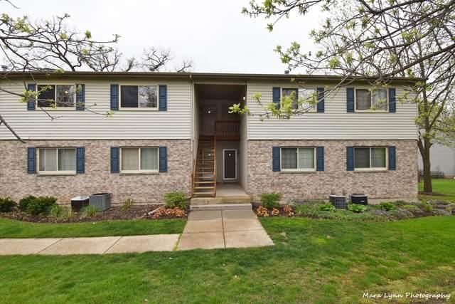 300 Woodridge Circle C, South Elgin, IL 60177 (MLS #11074524) :: Suburban Life Realty
