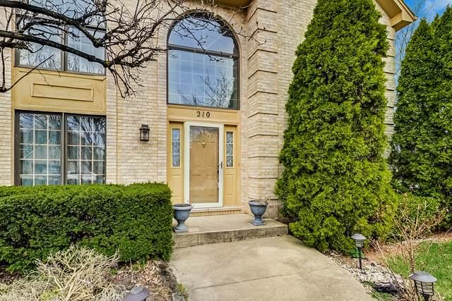 210 John Drive, Bartlett, IL 60103 (MLS #11074575) :: Helen Oliveri Real Estate