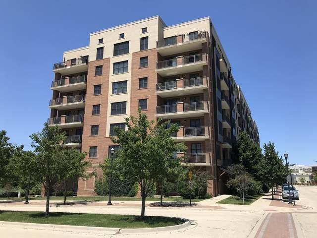 300 Anthony Avenue #609, Mundelein, IL 60060 (MLS #11074769) :: Jacqui Miller Homes