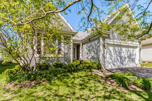 21308 Brush Lake Drive, Crest Hill, IL 60403 (MLS #11075194) :: Ani Real Estate