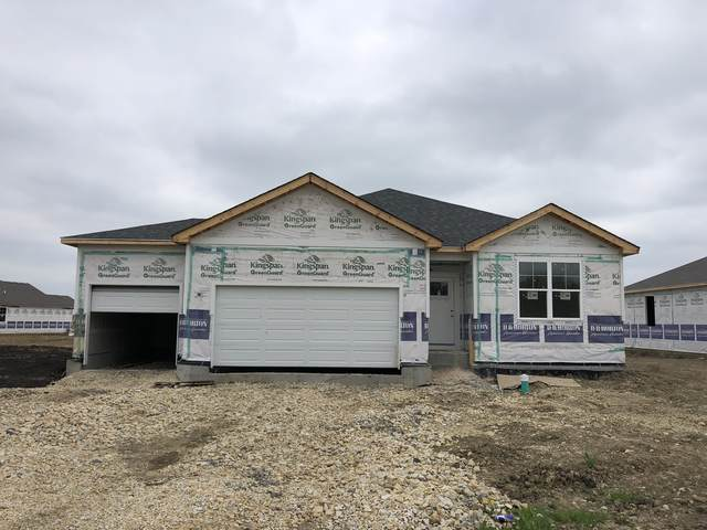 16863 S Corinne Circle, Plainfield, IL 60586 (MLS #11075212) :: Helen Oliveri Real Estate