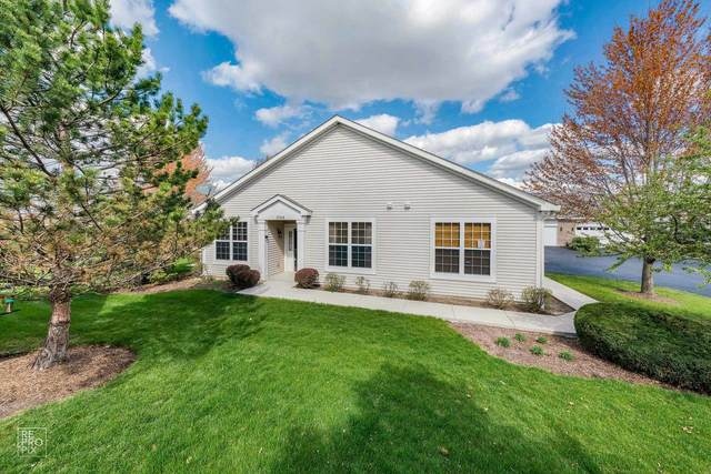 1544 Ludington Circle, Romeoville, IL 60446 (MLS #11075245) :: Angela Walker Homes Real Estate Group