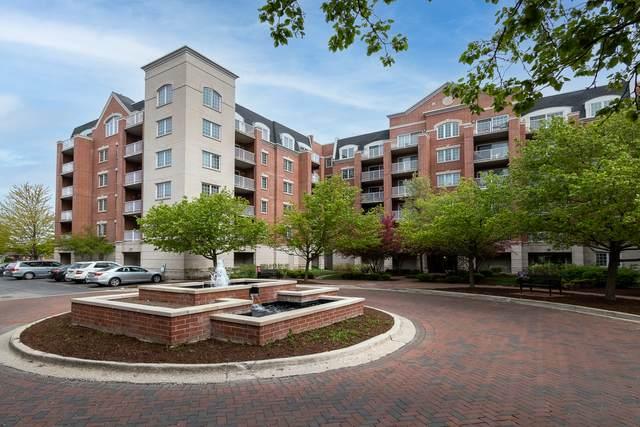 4833 N Olcott Avenue #313, Harwood Heights, IL 60706 (MLS #11075282) :: Helen Oliveri Real Estate