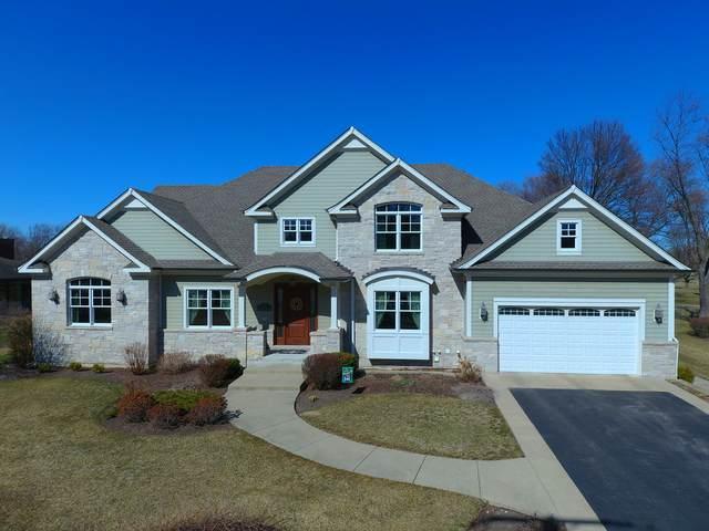 1540 W Blackhawk Drive, Mount Prospect, IL 60056 (MLS #11075343) :: Helen Oliveri Real Estate