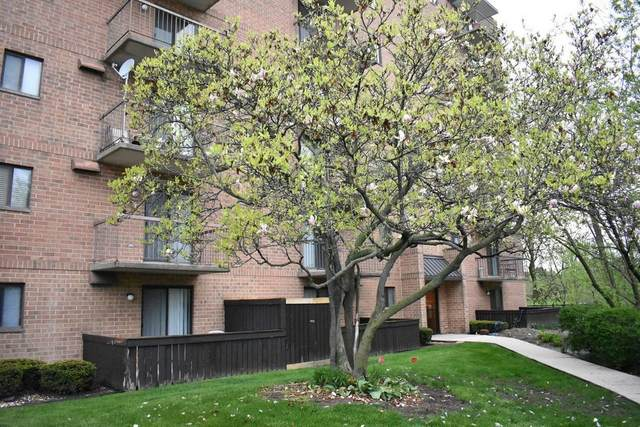 5960 Lake Bluff Drive #402, Tinley Park, IL 60477 (MLS #11075651) :: Littlefield Group