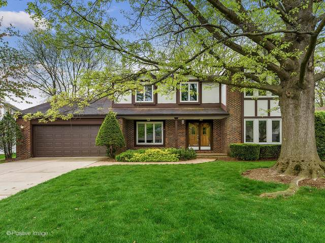 25W767 Menomini Drive, Wheaton, IL 60189 (MLS #11075754) :: Helen Oliveri Real Estate