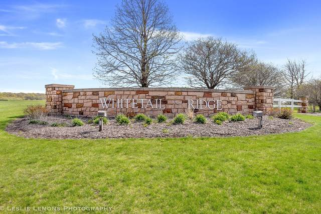 7178 Fairway Drive, Yorkville, IL 60560 (MLS #11075866) :: Carolyn and Hillary Homes