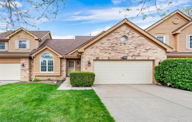 553 Philip Drive, Bartlett, IL 60103 (MLS #11075993) :: Helen Oliveri Real Estate