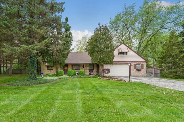 5728 Willow Springs Road, La Grange Highlands, IL 60525 (MLS #11076293) :: Helen Oliveri Real Estate