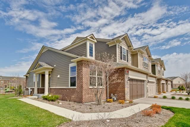 257 Belmont Drive, Lincolnshire, IL 60069 (MLS #11076343) :: Helen Oliveri Real Estate
