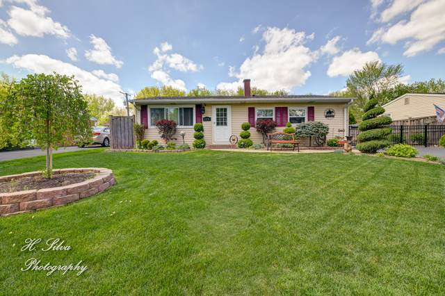 236 Harrison Street, Carpentersville, IL 60110 (MLS #11076506) :: Suburban Life Realty