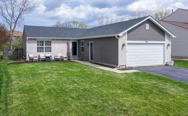 726 Bluejay Circle, Elk Grove Village, IL 60007 (MLS #11076856) :: Helen Oliveri Real Estate