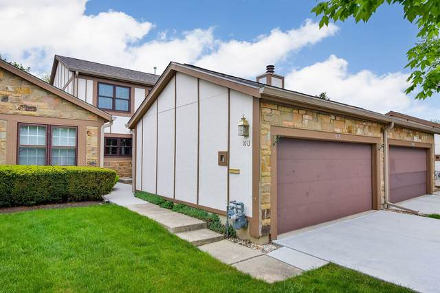 1013 Wheaton Oaks Drive, Wheaton, IL 60187 (MLS #11076870) :: BN Homes Group
