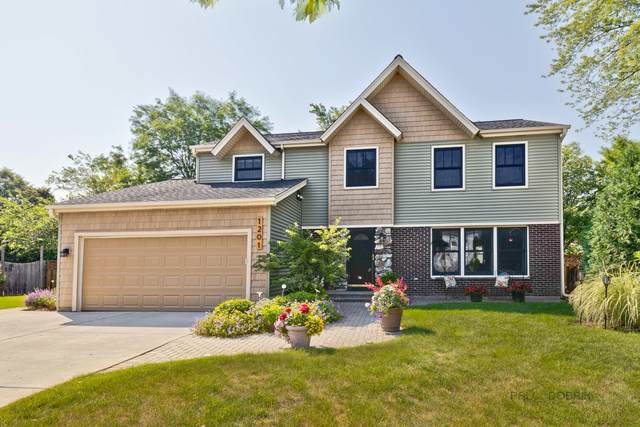 1201 Dannet Court, Buffalo Grove, IL 60089 (MLS #11076960) :: O'Neil Property Group