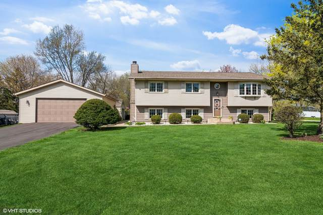12800 S Elaine Drive, Plainfield, IL 60585 (MLS #11076974) :: Carolyn and Hillary Homes
