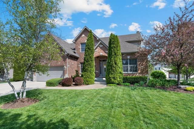 400 Deerfield Drive, Oswego, IL 60543 (MLS #11077072) :: O'Neil Property Group