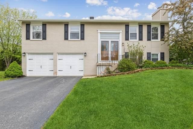 1860 W Parkside Drive, Hoffman Estates, IL 60192 (MLS #11077151) :: Helen Oliveri Real Estate