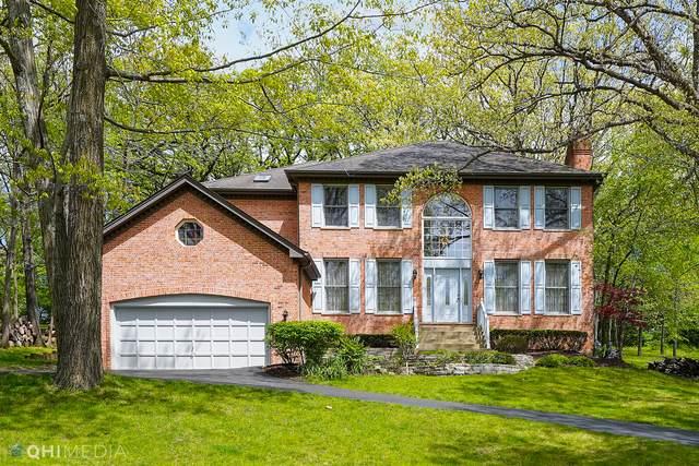 425 Harper Drive, Algonquin, IL 60102 (MLS #11077207) :: BN Homes Group