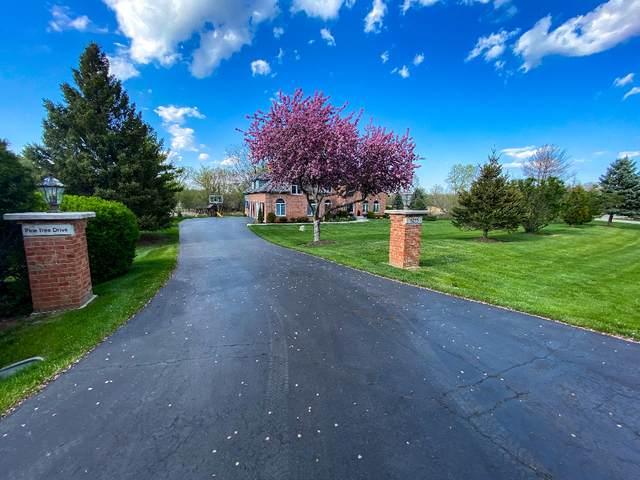 6255 Pine Tree Drive, Long Grove, IL 60047 (MLS #11077208) :: Helen Oliveri Real Estate