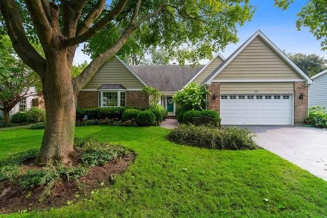 227 E North Avenue E, Lake Bluff, IL 60044 (MLS #11077378) :: Helen Oliveri Real Estate