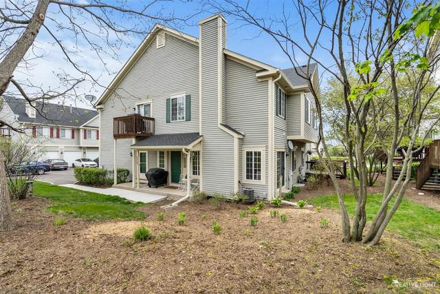 340 Windsor Court C, South Elgin, IL 60177 (MLS #11077468) :: BN Homes Group