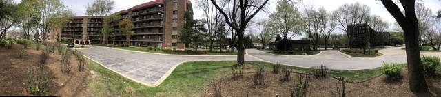 35 S Baybrook Drive #404, Palatine, IL 60074 (MLS #11077547) :: BN Homes Group
