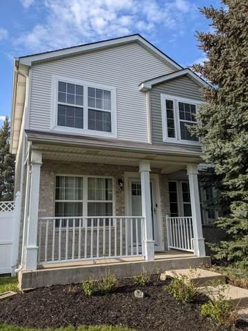 149 Mountain Laurel Court, Romeoville, IL 60446 (MLS #11077548) :: Helen Oliveri Real Estate