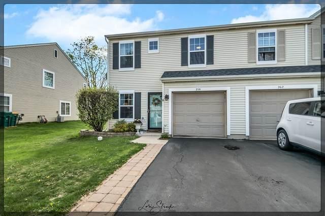 258 W Savannah Drive, Romeoville, IL 60446 (MLS #11077721) :: Helen Oliveri Real Estate