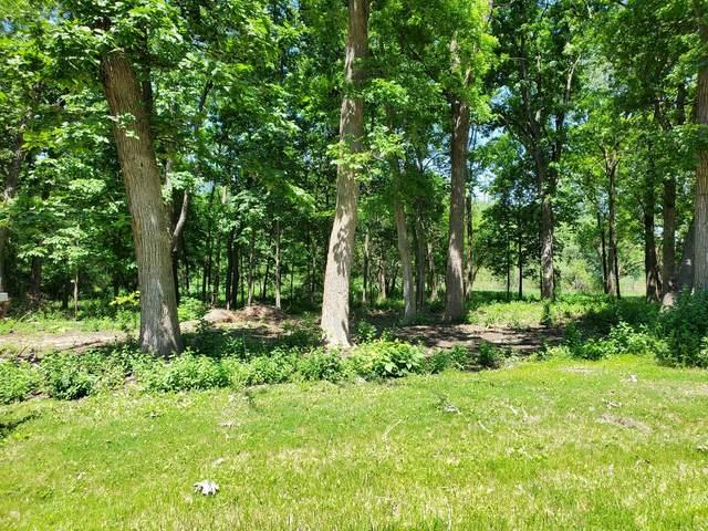 LOT 12 Pin Oak Lane, Gurnee, IL 60031 (MLS #11077726) :: The Wexler Group at Keller Williams Preferred Realty