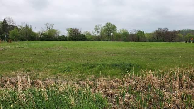 18465 S Pineprairie Drive, Mokena, IL 60448 (MLS #11077921) :: O'Neil Property Group
