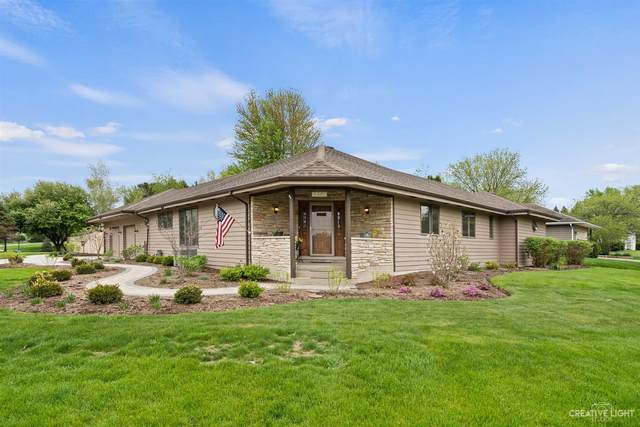 340 Carriage Hill Court, Sugar Grove, IL 60554 (MLS #11077944) :: Helen Oliveri Real Estate