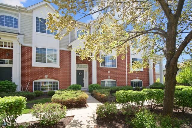 114 Morgans Gate Drive, Wood Dale, IL 60191 (MLS #11077988) :: Jacqui Miller Homes