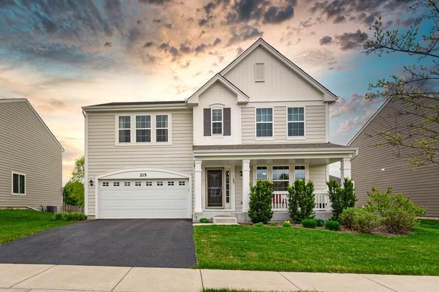 215 Pawtucket Avenue, Elgin, IL 60124 (MLS #11078021) :: Ani Real Estate
