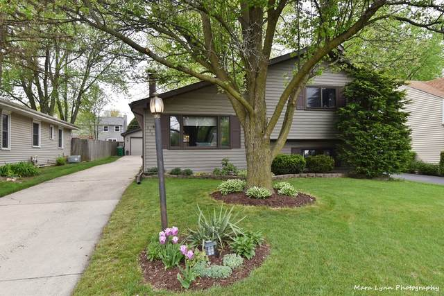 OS530 East Street, Winfield, IL 60190 (MLS #11078026) :: Helen Oliveri Real Estate