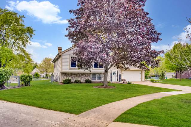 105 Oxford Place, Bloomingdale, IL 60108 (MLS #11078271) :: The Spaniak Team