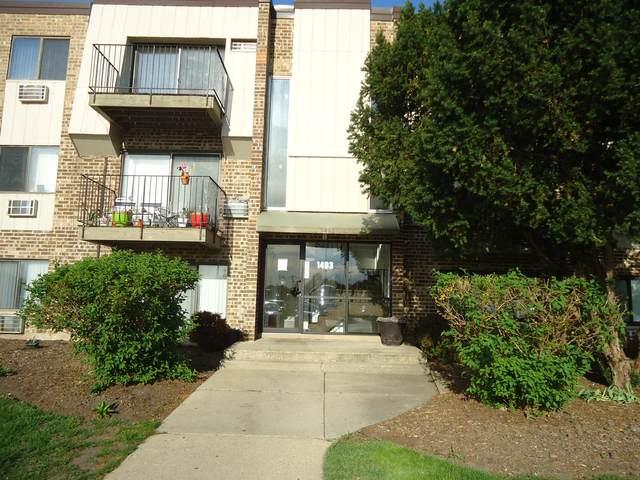 1493 Winslowe Drive #301, Palatine, IL 60074 (MLS #11078572) :: Helen Oliveri Real Estate